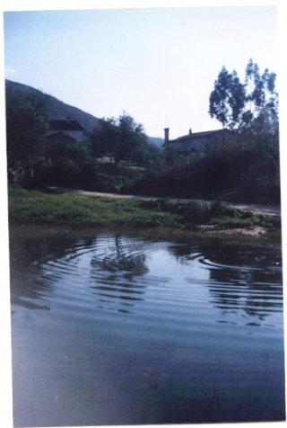 Lagoa 1991