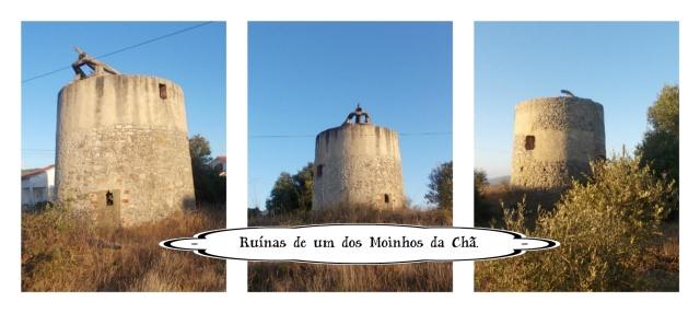 MOINHO DA CHA