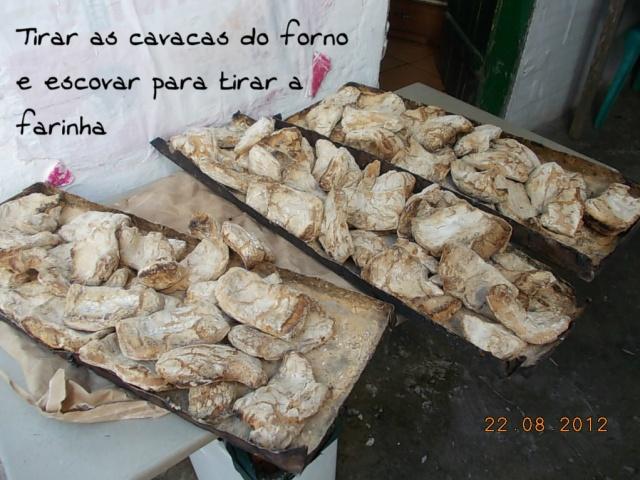 Cavacas16