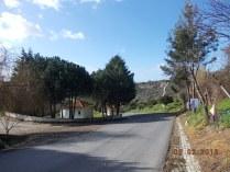 Estrada de Porto de Mós