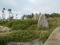 Parque Jurássico