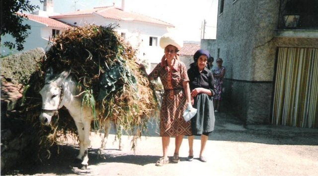 Burro, Benvinda e Maria Saloia