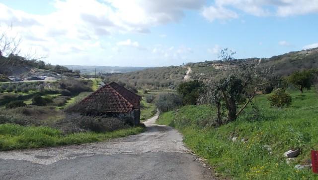 O Caminho do Ribeiro
