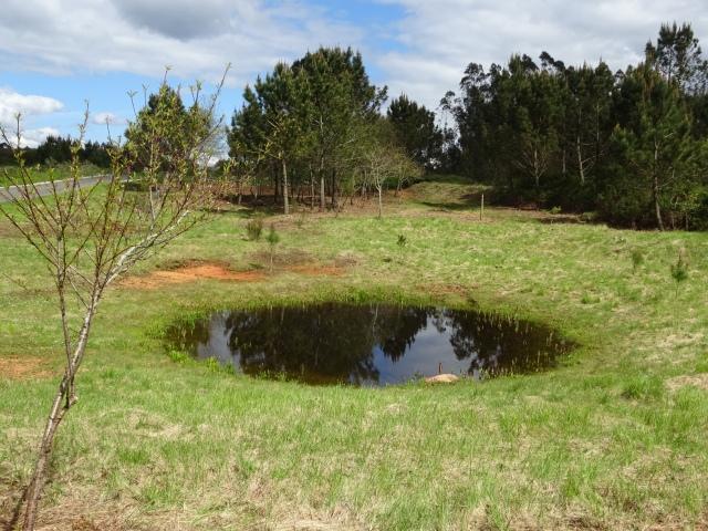 Lagoa do Chão Nogueira