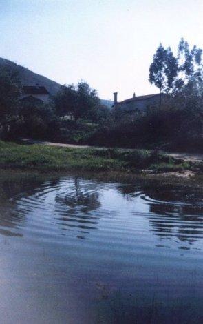 Lagoa de Santa Catarina em 1991. Actualmente ainda é possível ver esta lagoa, no inverno quando chove muito. Diz-se que foi nas imediações da Lagoa de Santa Catarina que apareceram as primeiras casas do Alqueidão.