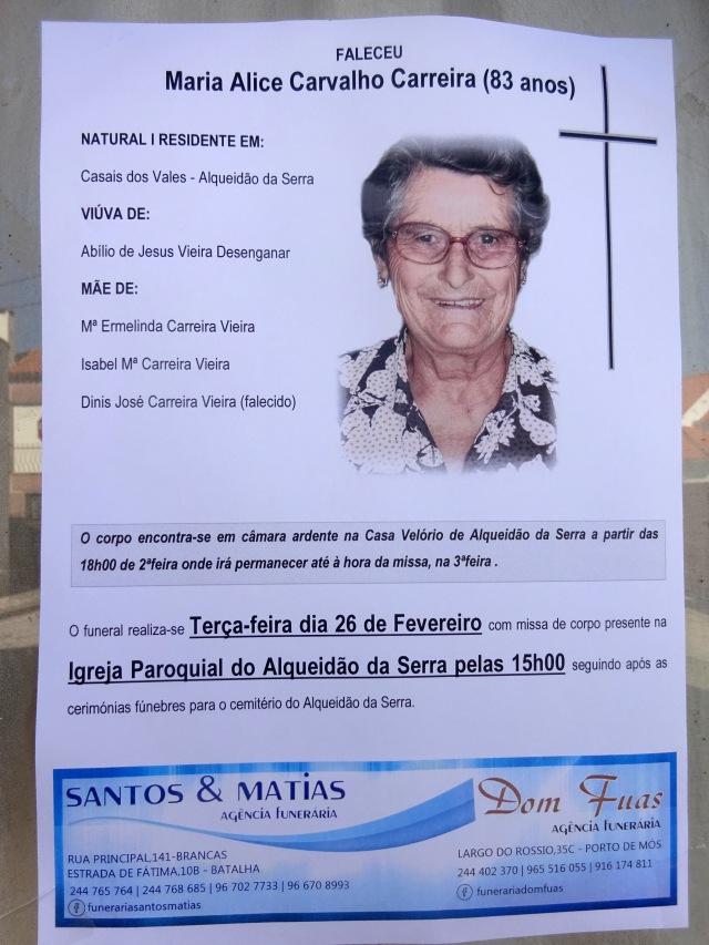 16 Maria Alice Carvalho Carreira